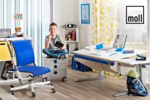 moll funktionsmoebel ergonomiewelt blog