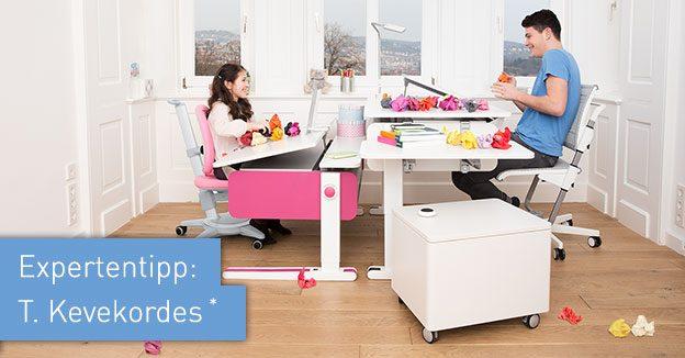 funktionsm bel von moll ergonomiewelt magazin. Black Bedroom Furniture Sets. Home Design Ideas